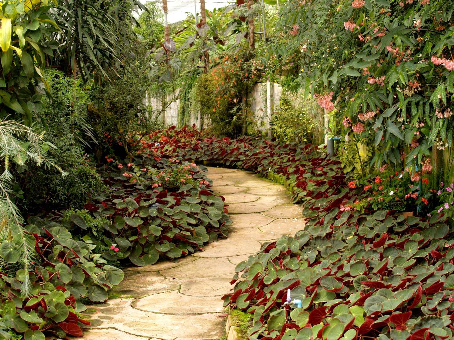 Man with Two Gardens –Our Quran Journey